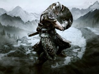 Alternatieve covers voor Skyrim