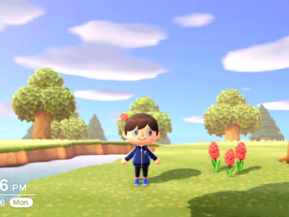 Animal Crossing New Horizons – 24 uur in 1 minuut