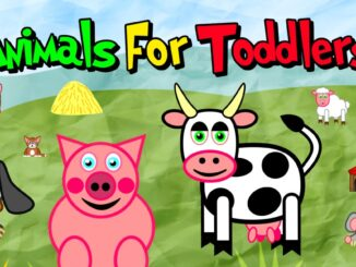 Release - Animals for Toddlers