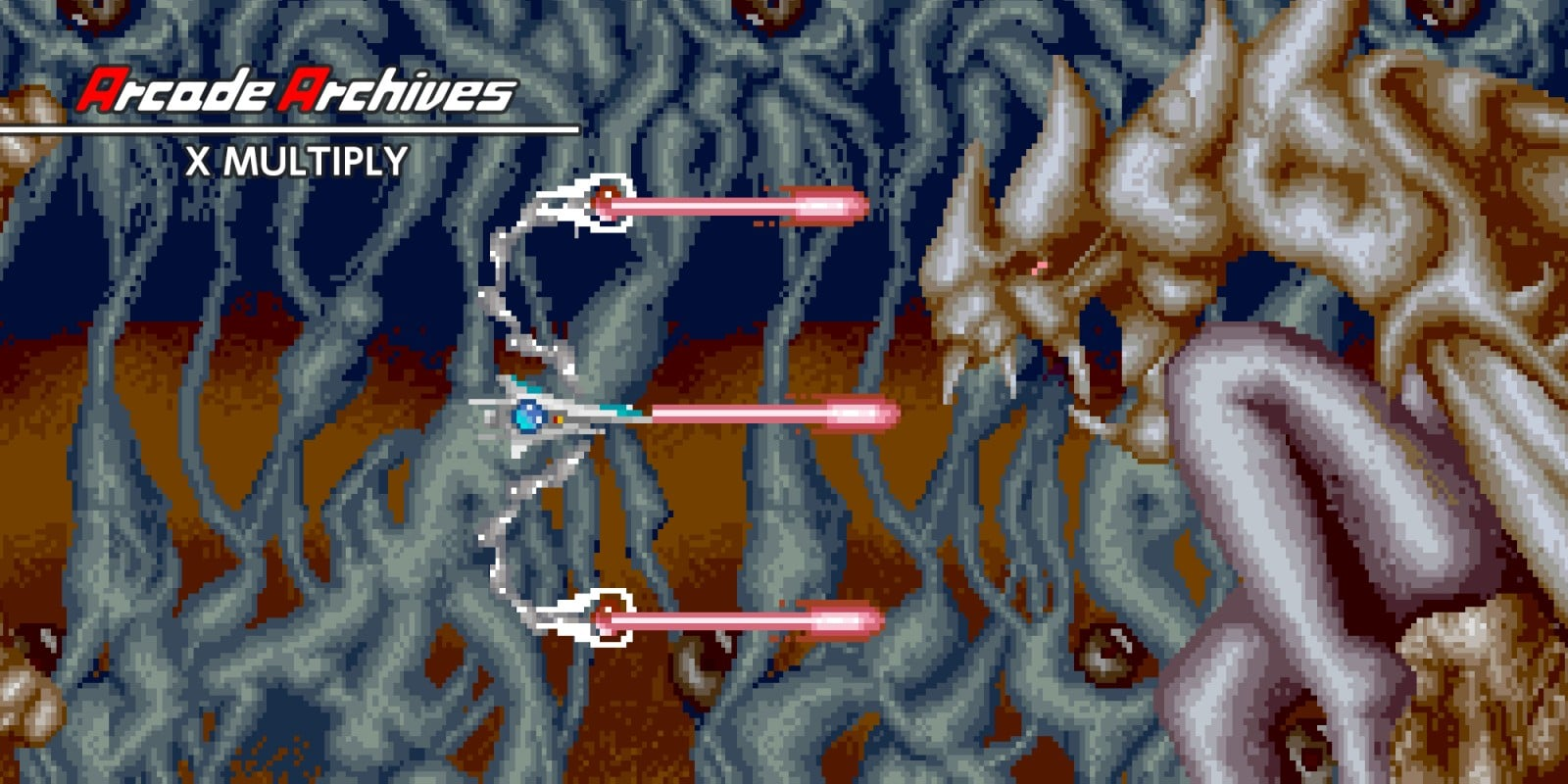 Arcade Archives X MULTIPLY