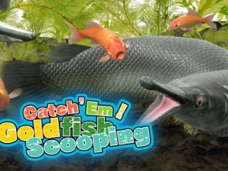Release - Catch 'Em! Goldfish Scooping