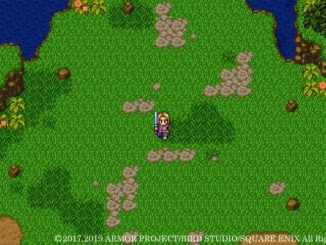 Dragon Quest XIS – 2D Mode Gameplay
