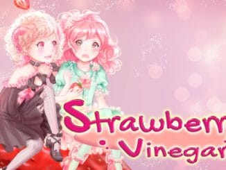 Release - Strawberry Vinegar