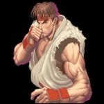 Street Fighter 30th Anniversary Collection Retrospective Series