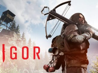 Vigor – Cross Platform Play