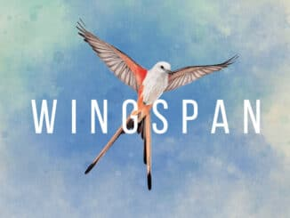 Wingspan – 33 minuten gameplay